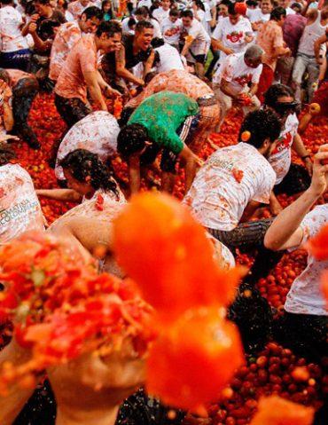 เทศกาลปามะเขือเทศ